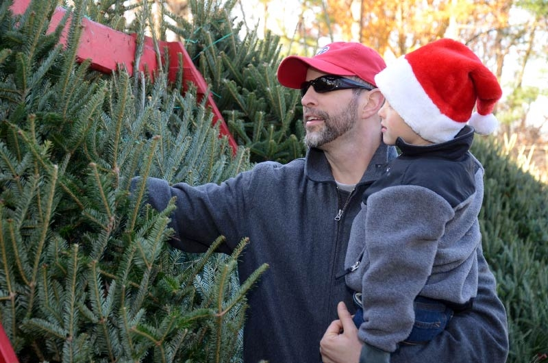 latest news on facebook - Christmas Tree Farm Near Me