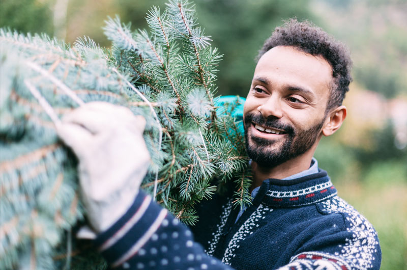 Man carrying a Christmas tree - Tennessee Christmas Tree Growers €� Christmas Tree Farms In Tennessee